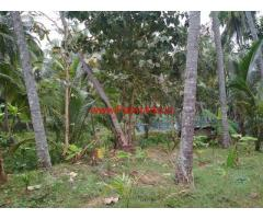 3.5 Acres Farm land with Poultry Shed for sale at Chittur - Palakkad