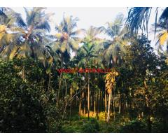 6 Acres Farm land with Farm House for sale at Hosanagara