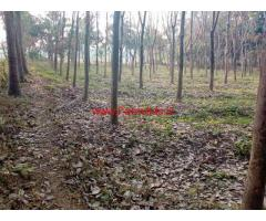 90 Cents Rubber Plot for sale bordering Thiruvilvamalai  - Thrissur