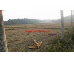 2.5 Acres Farm land for sale at Panamaram - Wayanad
