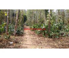 7 acre Coffee land for sale in sakleshpura, 200 meters from Highway