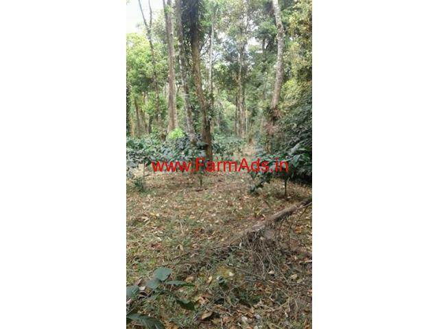 30 Acre Semi maintained coffee estate for sale close to Virajpete