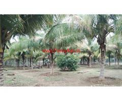 9.25 acre agricultural land sale in Kundadam , Dharapuram -Tiruppur