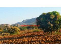 7 acres Farm land for sale in Molakalacheruvu mandal - Chitoor