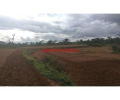 5 acres agriculture land in kothanur near Denkanikotai for sale.
