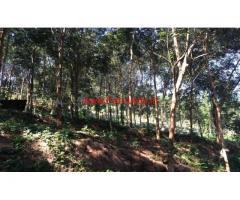 2.83 Acre Rubber plantation for sale at Karimkunnam , thodupuzha