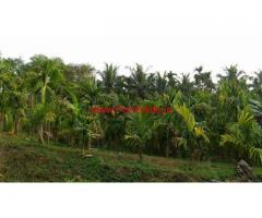 4 Acres Areca Farm for sale at Perinje - Mangalore