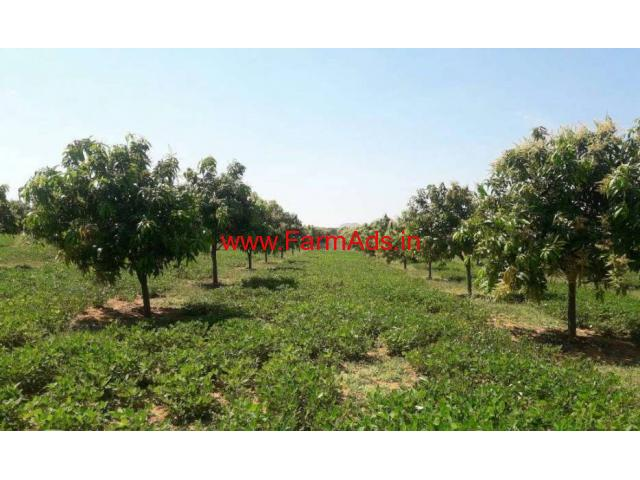 7.5 Acres Mango Farm for sale in Chitoor - Andhra