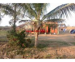 74 Acres Farm Land for sale at Belur, 28 KMS from Hassan