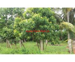 6 Acres road facing farm land for sale at Chittur - Palakkad