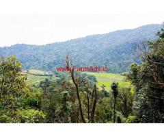 20 acre Coffee Estate land for  sale in madikeri, Near bagmadala