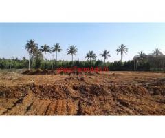 3 acres agriculture land for sale at Doddaballapura Taluk Bangalore Rural