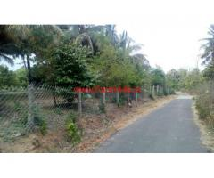 10 Acres Tar Road Facing Coconut Farm for sale at Chittur - palakkad