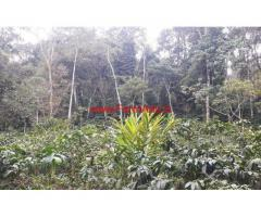 22 acres coffee estate with a homestay for sale at Madikeri