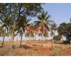 12.5 acres pure red soil farm land available for sale at Lepakshi