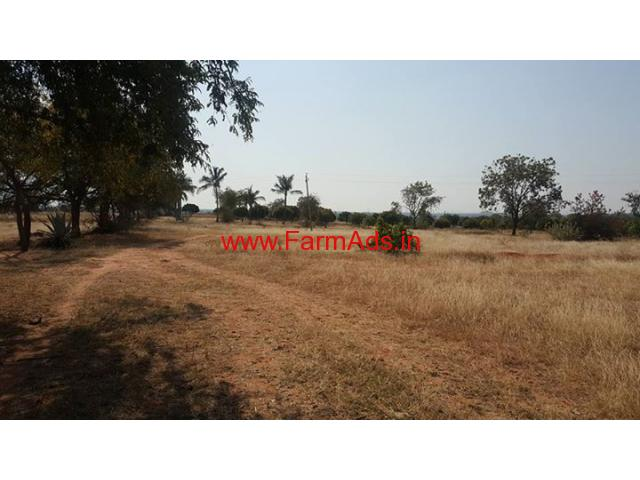 20 Acres agriculture Farm Land for sale at Bagepalli