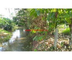 9.63 acres arecanut and coconut plantation land for sale in hunsemakki,