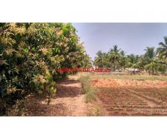 1.80 acres mango farm for sale , well maintained in krishnagiri district