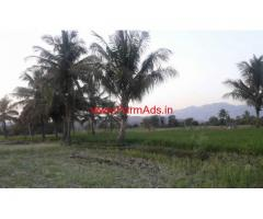3 acres agriculture land for sale Sodam Mandal , Chitoor