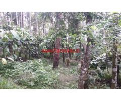 20 cent level land for sale in wayanad near Kenichira Town