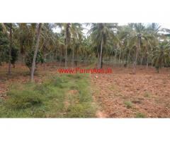 12 Acre coconut farm for sale near Mysore.
