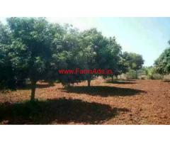 3.5 acre of Mango plantation land sale near Chintamani
