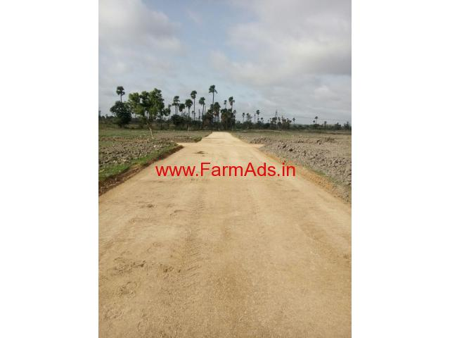 1.25 Acres farm land with 400 malabar/ accasia tree
