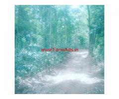 5 acre coffee and pepper plantation for sale in aldur