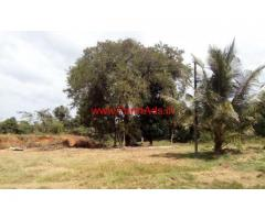 223.5 Cents Plain Agriculture Land for sale at Moodbidri