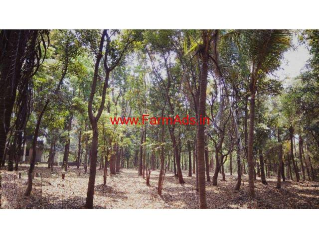 6 Acre River Touch Agri Land With Farmhouse For Sale At Karjat Raigad Raigad Farmads In