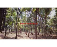 6 Acre River touch agri land with farmhouse for sale at Karjat - Raigad