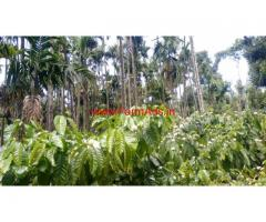 16 acre well maintained coffee estate for sale in sakleshpura