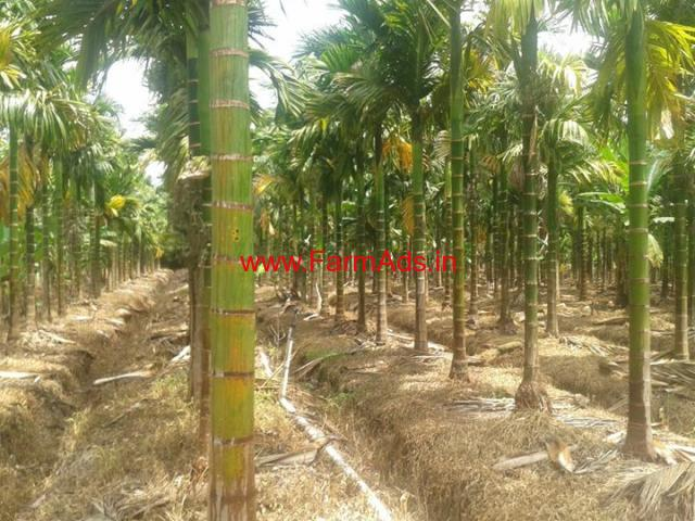 6 acre river side farm land 3bhk sheet house for sale in bailoor, karkala