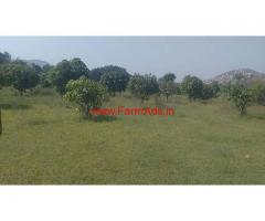 30 Acers Agriculture land and mango garden for sale at Kalikere Mandal