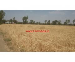 50 Acres Agricultural  Land for sale in Ashok Nagar - Madhya Pradesh