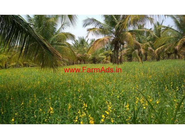 Agriculture Farm land for sale in yadiyur Kunigal Taluk 5 Acres